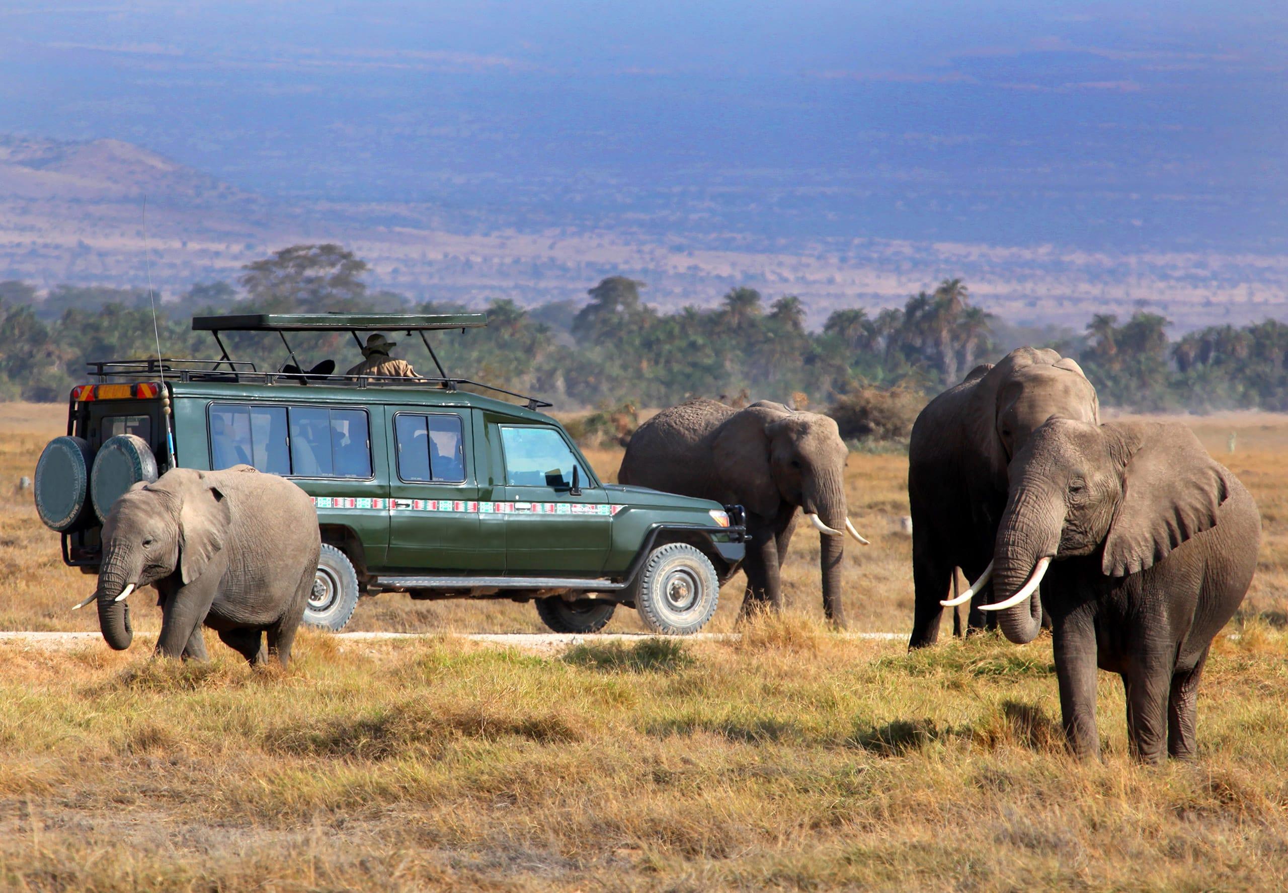 12-daagse groepsrondreis Beste van Oost-Afrika